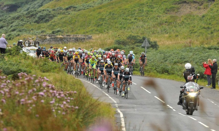 The peloton on the road to Kelso (Sweetspot)